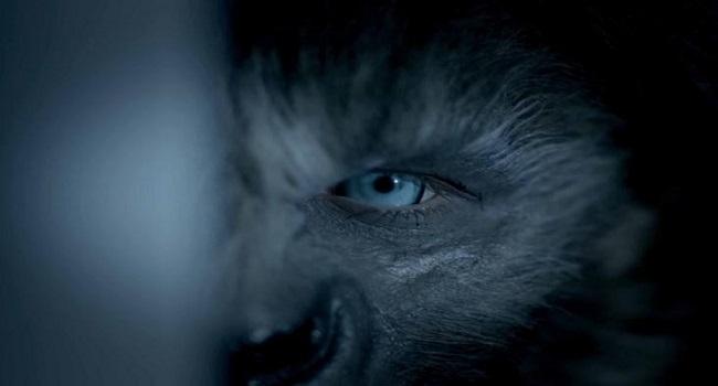 After Dark - Wolves