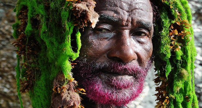 Lee Scratch Perry Vision of Paradise
